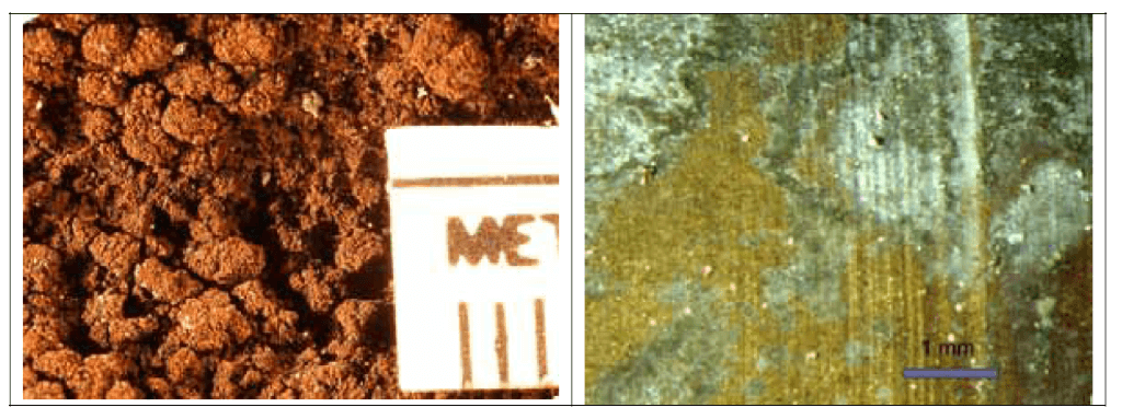 Figure 4. Microphotograph of lead (left) and brass (right) parts are shown in the photos.