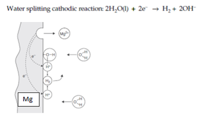 Figure 2. Electrochemical reactions of Mg during corrosion in neutral water.