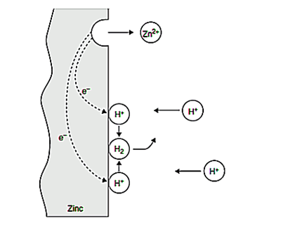 Figure 1. Electrochemical reactions during the corrosion of Zn in air-free HCL.